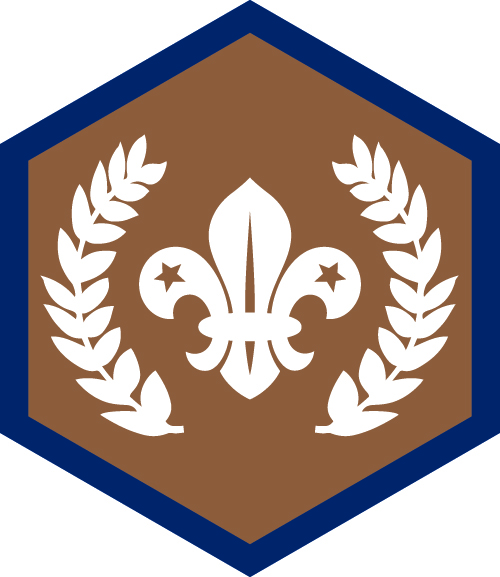 Chief Scouts bronze badge