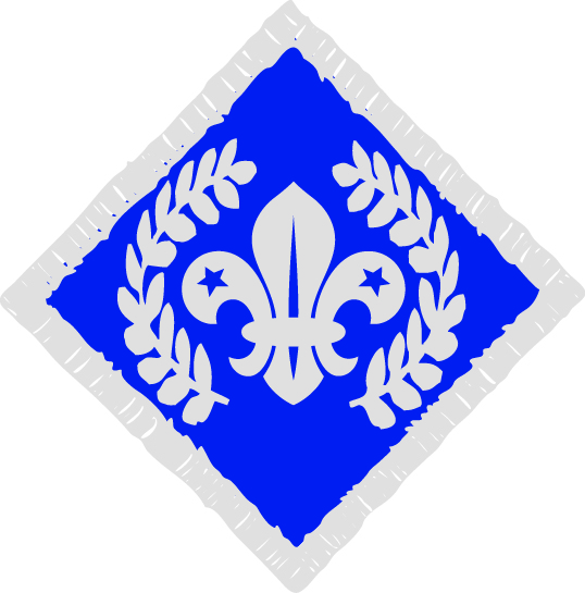 Chief Scouts diamond badge