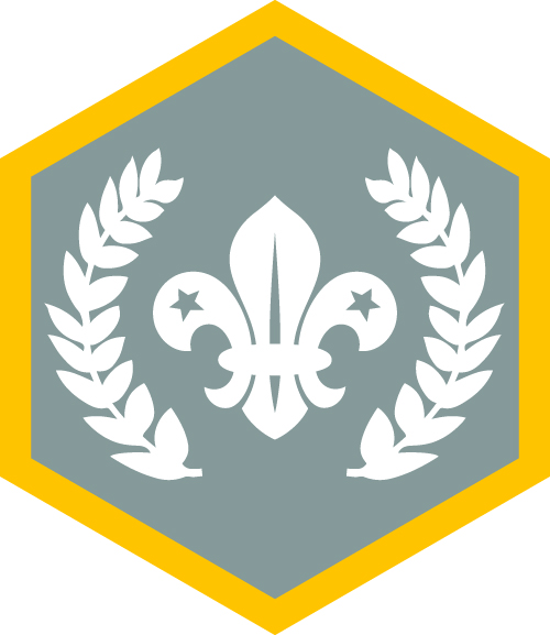 Chief Scouts silver badge